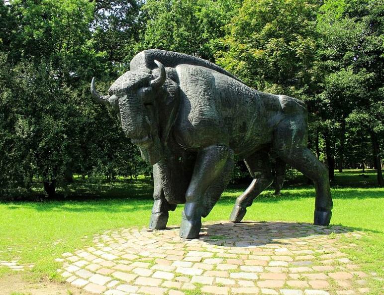 23 LT bull